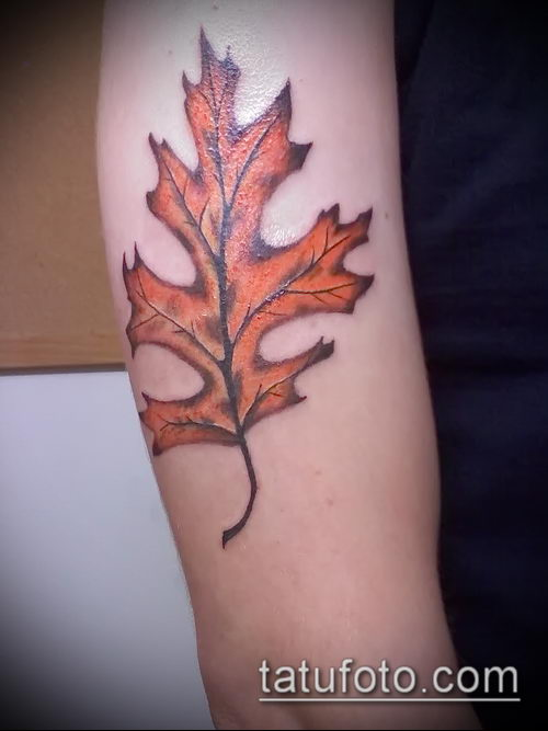фото тату дуб (tattoo oak) (значение) - пример рисунка - 047 tatufoto.com