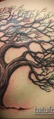 фото тату дуб (tattoo oak) (значение) – пример рисунка – 058 tatufoto.com