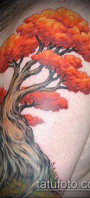 фото тату дуб (tattoo oak) (значение) – пример рисунка – 059 tatufoto.com