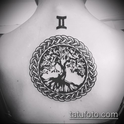 фото тату дуб (tattoo oak) (значение) - пример рисунка - 061 tatufoto.com