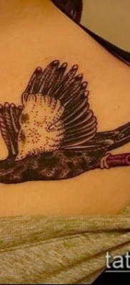 фото тату дятел (значение) – пример интересного рисунка тату – 012 tatufoto.com