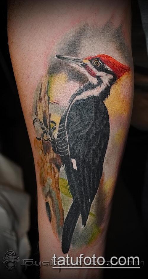 фото тату дятел (значение) - пример интересного рисунка тату - 016 tatufoto.com