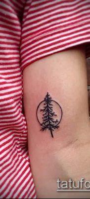 фото тату ель (tattoo spruce) (значение) – пример рисунка – 003 tatufoto.com