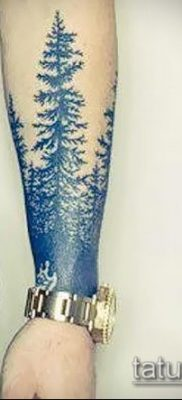 фото тату ель (tattoo spruce) (значение) – пример рисунка – 005 tatufoto.com