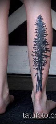 фото тату ель (tattoo spruce) (значение) – пример рисунка – 007 tatufoto.com