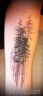 фото тату ель (tattoo spruce) (значение) – пример рисунка – 009 tatufoto.com