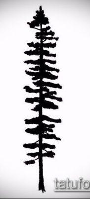 фото тату ель (tattoo spruce) (значение) – пример рисунка – 011 tatufoto.com