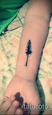 фото тату ель (tattoo spruce) (значение) – пример рисунка – 013 tatufoto.com