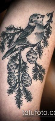 фото тату ель (tattoo spruce) (значение) – пример рисунка – 016 tatufoto.com