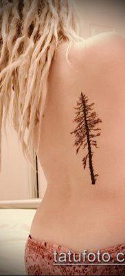 фото тату ель (tattoo spruce) (значение) – пример рисунка – 017 tatufoto.com