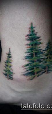 фото тату ель (tattoo spruce) (значение) – пример рисунка – 021 tatufoto.com