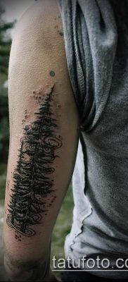 фото тату ель (tattoo spruce) (значение) – пример рисунка – 022 tatufoto.com