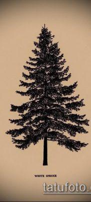 фото тату ель (tattoo spruce) (значение) – пример рисунка – 026 tatufoto.com