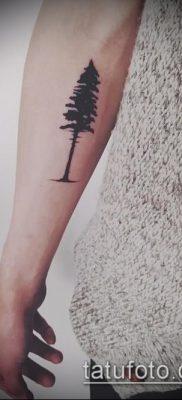 фото тату ель (tattoo spruce) (значение) – пример рисунка – 037 tatufoto.com