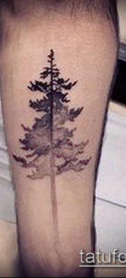 фото тату ель (tattoo spruce) (значение) – пример рисунка – 039 tatufoto.com