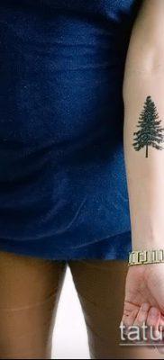 женский вариант цветной тату ель на руку – фото пример