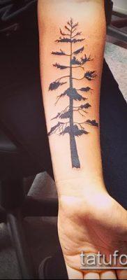 фото тату ель (tattoo spruce) (значение) – пример рисунка – 050 tatufoto.com
