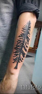 фото тату ель (tattoo spruce) (значение) – пример рисунка – 052 tatufoto.com