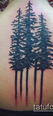 фото тату ель (tattoo spruce) (значение) – пример рисунка – 054 tatufoto.com