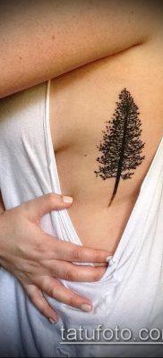 фото тату ель (tattoo spruce) (значение) – пример рисунка – 063 tatufoto.com