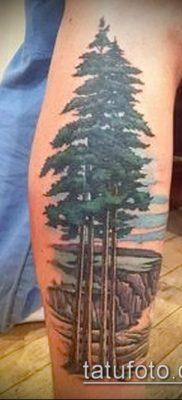 фото тату ель (tattoo spruce) (значение) – пример рисунка – 068 tatufoto.com