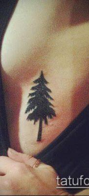 фото тату ель (tattoo spruce) (значение) – пример рисунка – 069 tatufoto.com