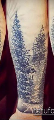 фото тату ель (tattoo spruce) (значение) – пример рисунка – 072 tatufoto.com