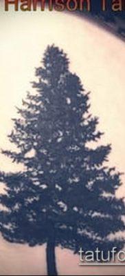 фото тату ель (tattoo spruce) (значение) – пример рисунка – 079 tatufoto.com