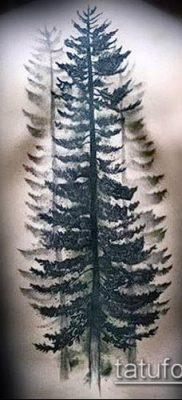 фото тату ель (tattoo spruce) (значение) – пример рисунка – 082 tatufoto.com