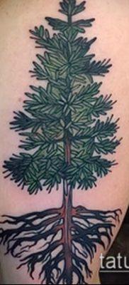 фото тату ель (tattoo spruce) (значение) – пример рисунка – 086 tatufoto.com