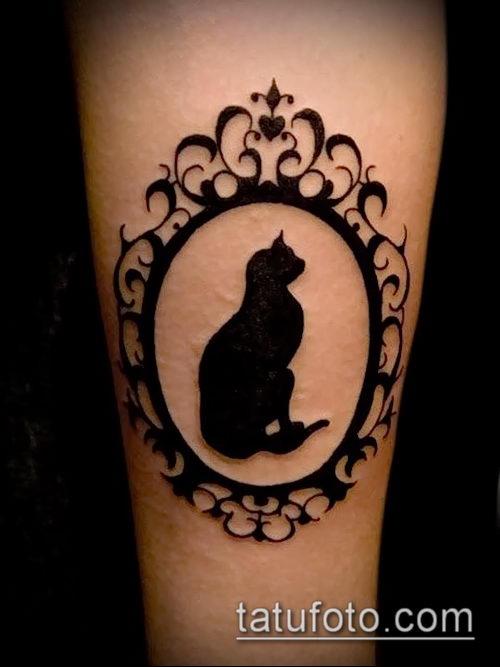 Фото татуировки кота