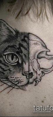 фото тату кот (значение) – пример интересного рисунка тату – 011 tatufoto.com
