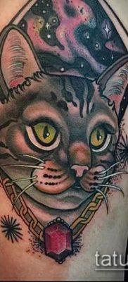 фото тату кот (значение) – пример интересного рисунка тату – 030 tatufoto.com