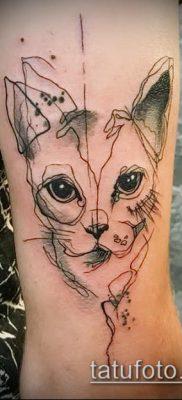 фото тату кот (значение) – пример интересного рисунка тату – 038 tatufoto.com