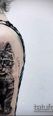 фото тату кот (значение) – пример интересного рисунка тату – 040 tatufoto.com