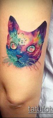 фото тату кот (значение) – пример интересного рисунка тату – 043 tatufoto.com