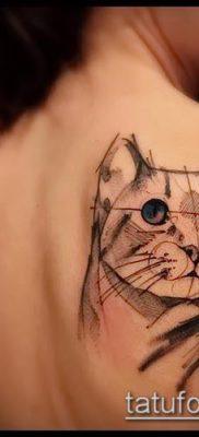 фото тату кот (значение) – пример интересного рисунка тату – 046 tatufoto.com