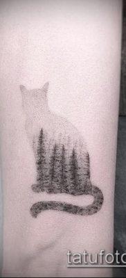 фото тату кот (значение) – пример интересного рисунка тату – 054 tatufoto.com
