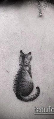фото тату кот (значение) – пример интересного рисунка тату – 055 tatufoto.com