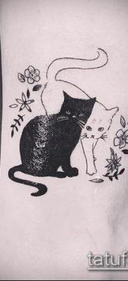 фото тату кот (значение) – пример интересного рисунка тату – 058 tatufoto.com