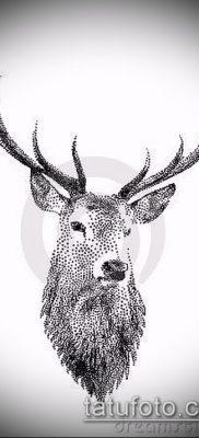 фото тату лось (значение) – пример интересного рисунка тату – 014 tatufoto.com