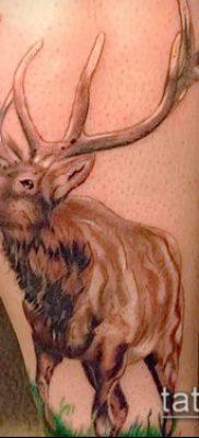 фото тату лось (значение) – пример интересного рисунка тату – 031 tatufoto.com
