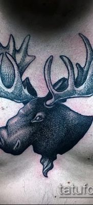 фото тату лось (значение) – пример интересного рисунка тату – 034 tatufoto.com