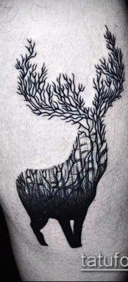 фото тату лось (значение) – пример интересного рисунка тату – 053 tatufoto.com