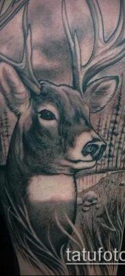 фото тату лось (значение) – пример интересного рисунка тату – 056 tatufoto.com