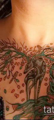 фото тату на груди (значение) – пример интересного рисунка тату – 065 tatufoto.com