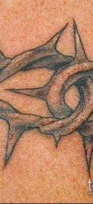 фото тату терновник (значение) — пример интересного рисунка тату — 057 tatufoto.com