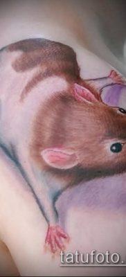 фото тату хомяк (значение) – пример интересного рисунка тату – 024 tatufoto.com