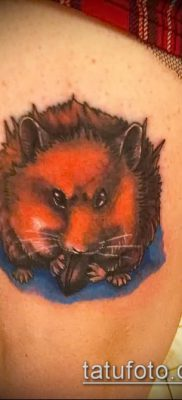 фото тату хомяк (значение) – пример интересного рисунка тату – 035 tatufoto.com