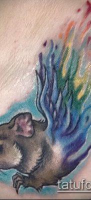 фото тату хомяк (значение) – пример интересного рисунка тату – 045 tatufoto.com